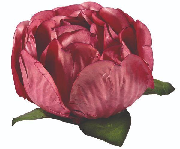 Forminha Bela Rosa Seco 2