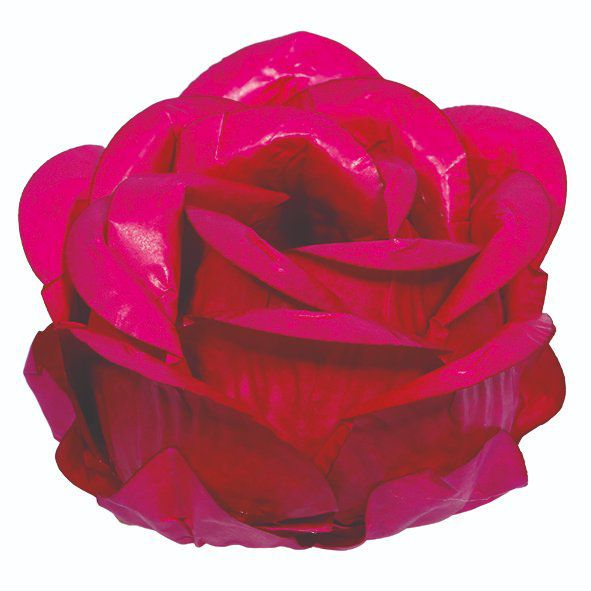 Forminha Magnólia Pink