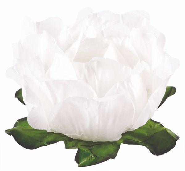 Forminha Primavera Branco