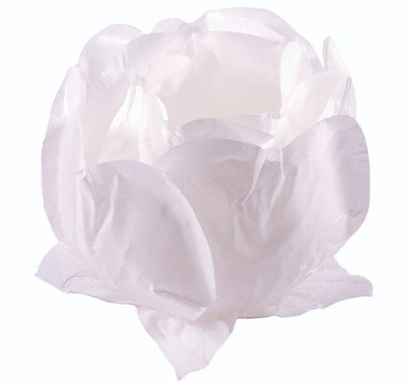 Forminha Princesa Branco / Branco