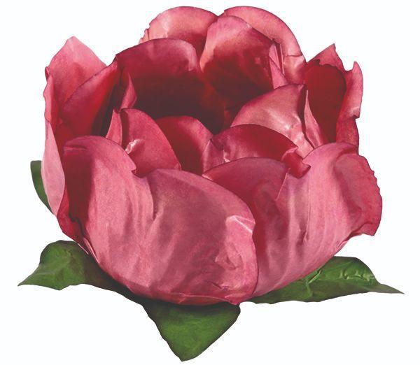 Forminha Princesa Rosa Seco 2