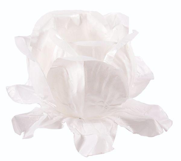 Forminha Rainha Branco / Branco