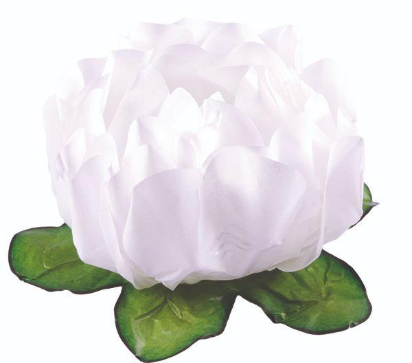 Forminha Rosa Maior Branco