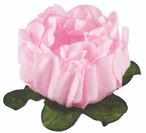 Forminha Rosa Maior Rosa Bebê