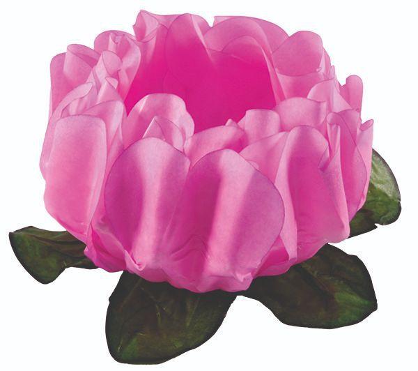 Forminha Rosa Maior Rosa Claro