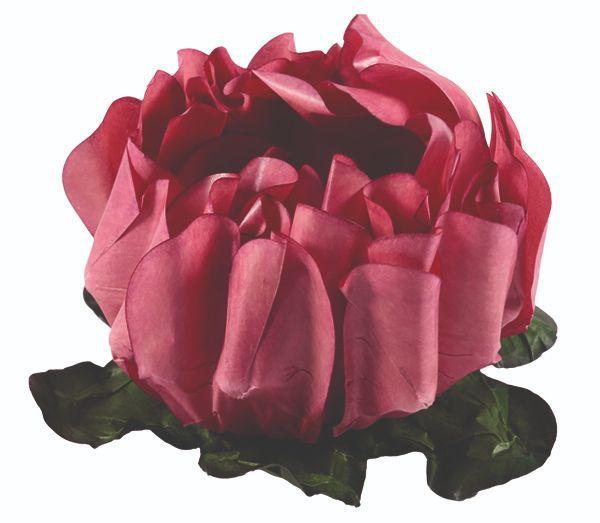 Forminha Rosa Maior Rosa Seco 2