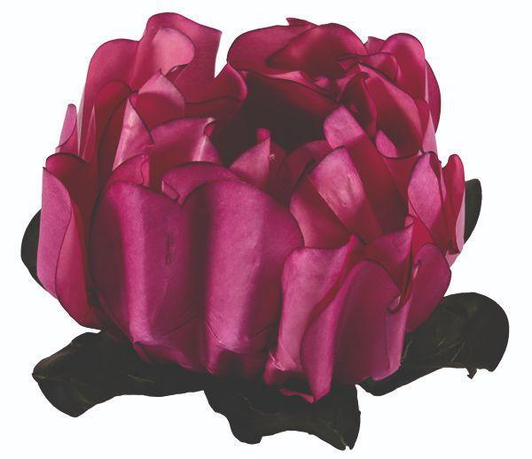 Forminha Rosa Maior Rosê