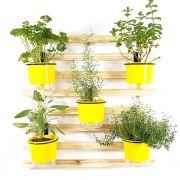 Horta Vertical Mini Natural 60x60cm com 5 suportes e 5 Vasos Auto Irrigáveis Amarelo
