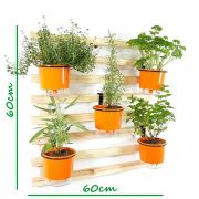 Horta Vertical Mini Natural 60x60cm com 5 suportes e 5 Vasos Auto Irrigáveis Laranja
