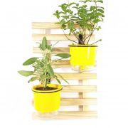 Horta Vertical Natural 45x30cm Minizinha com 2 suportes e 2 Vasos Auto Irrigáveis Amarelos