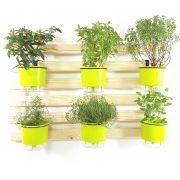 Horta Vertical Natural 60x100cm com 6 suportes e 6 Vasos Auto Irrigáveis Verde Claro