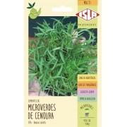 Semente de Microverde Cenoura