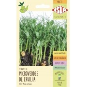 Semente de Microverde Ervilha