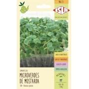 Semente de Microverde Mostarda