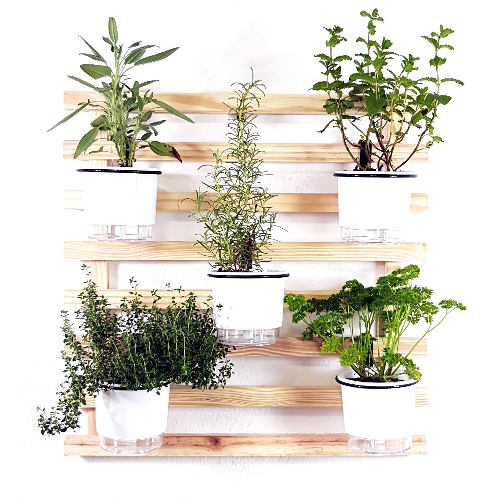 Horta Vertical Mini Natural 60x60cm com 5 suportes e 5 Vasos Auto Irrigáveis Branco