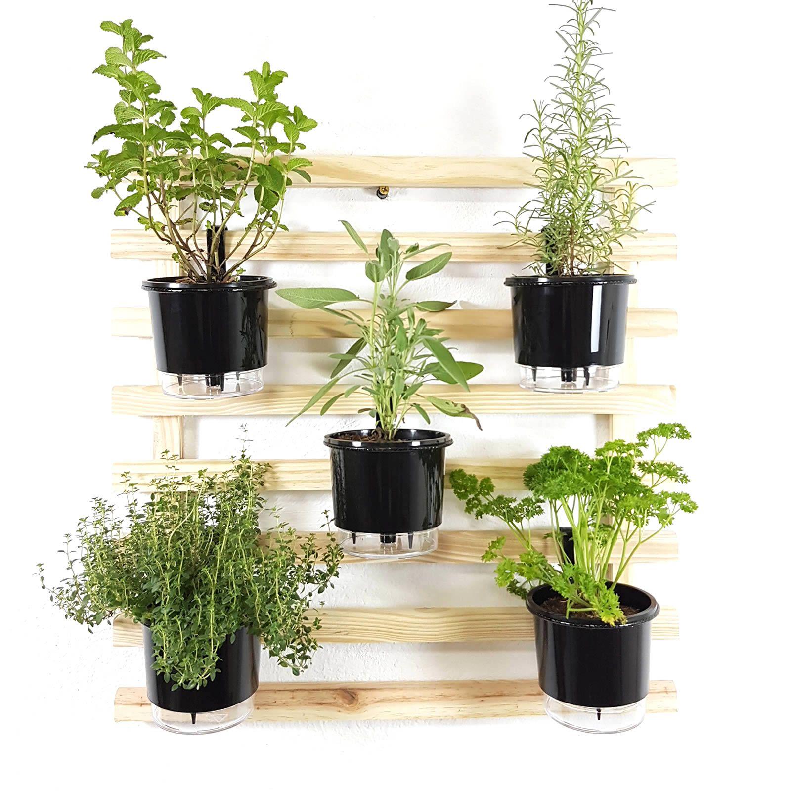 Horta Vertical Mini Natural 60x60cm com 5 suportes e 5 Vasos Auto Irrigáveis Preto