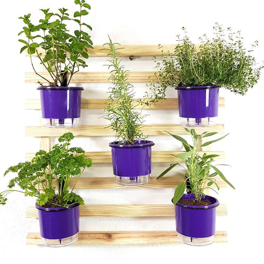 Horta Vertical Mini Natural 60x60cm com 5 suportes e 5 Vasos Auto Irrigáveis Roxo