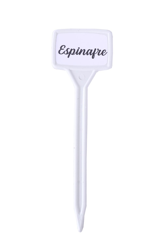 Identificador de Plantas - Espinafre