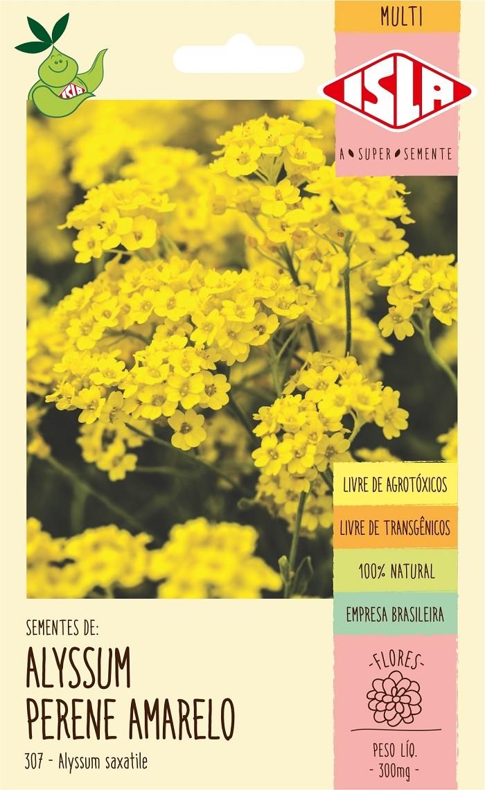 Semente de Alyssum Amarelo