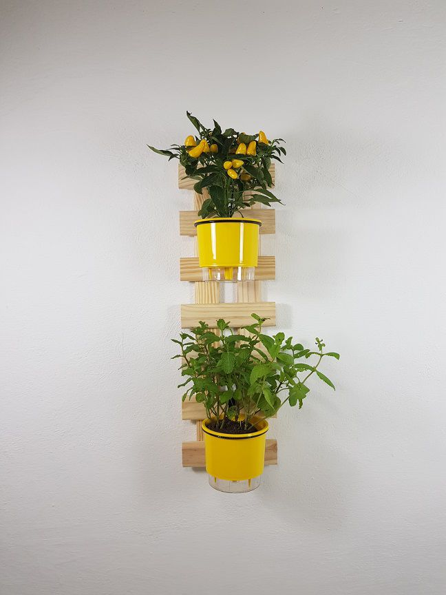 Treliça Vertical 80x25cm Natural + 2 Suportes + 2 Vasos Raiz Médios N3 - Amarelo