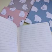Caderno 1/4  Polar