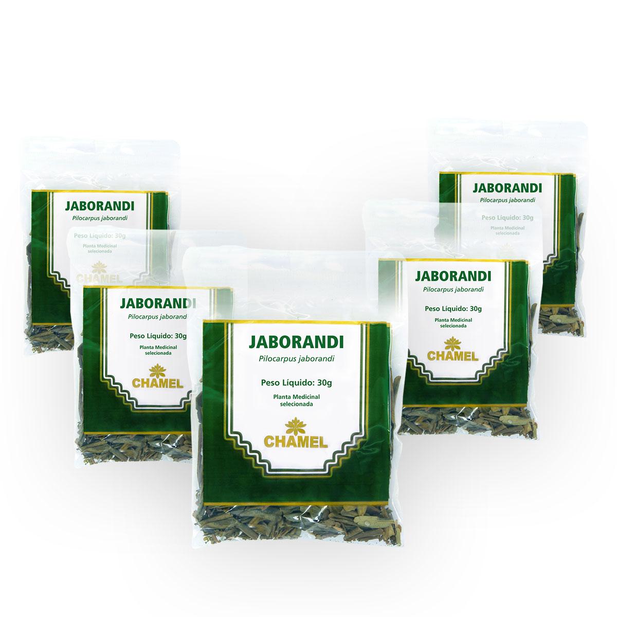 Jaborandi 30g Chamel com 5 Unidades - Chá-Folhas