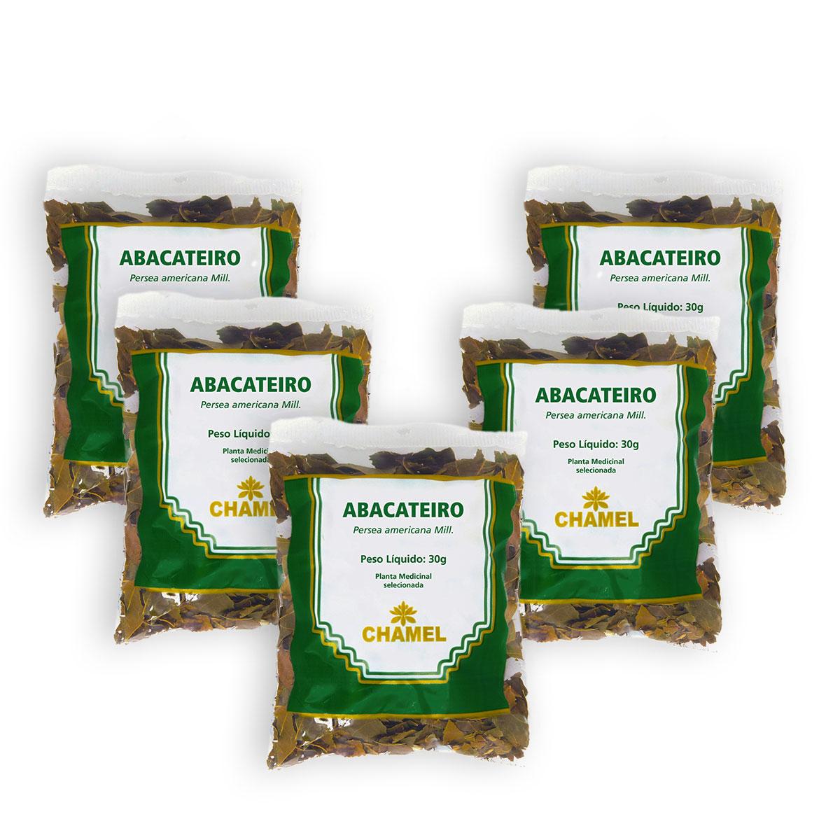 Abacateiro 30g Chamel com 5 Unidades  - Chá Folhas