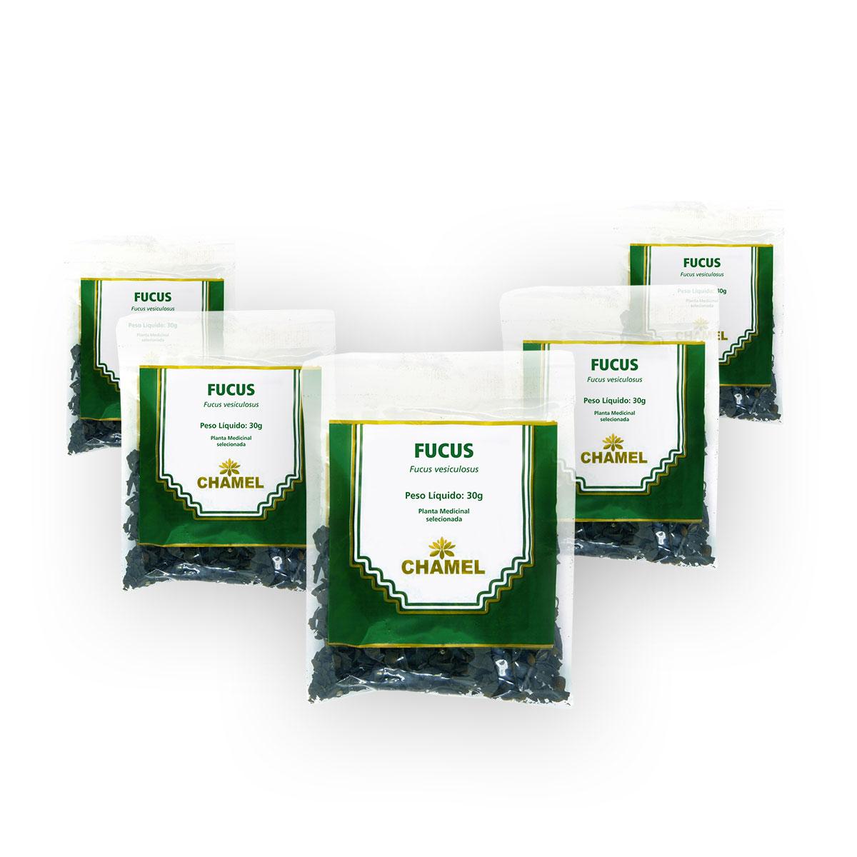 Fucus 30g Chamel 5 Unidades - Chá-Talos