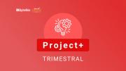 Project+ Trimestral - Licença Bitrix24