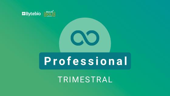 Professional Trimestral - Licença Bitrix24  - Bytebio