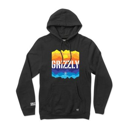 Moletom Grizzly Reflect Hoodie