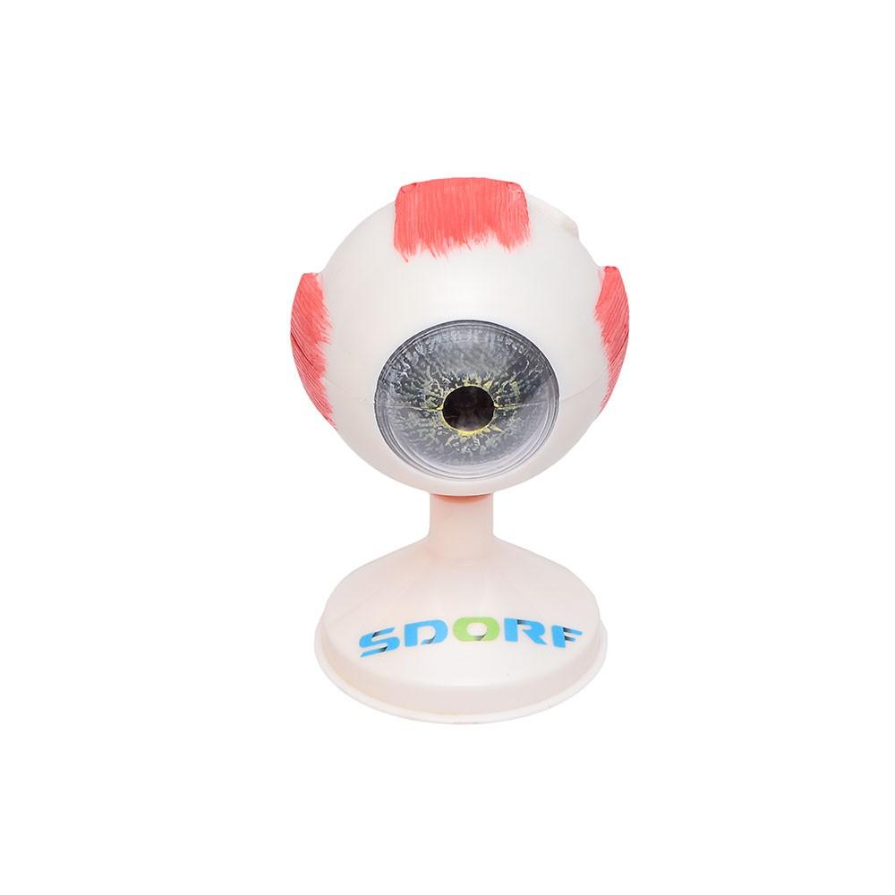 OLHO 3,5X O TAMANHO REAL DIVIDIDO EM 9 PARTES SD5043/B SDORF