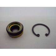 Selo Compressor - Seltec Tm15/16/21/Sanden