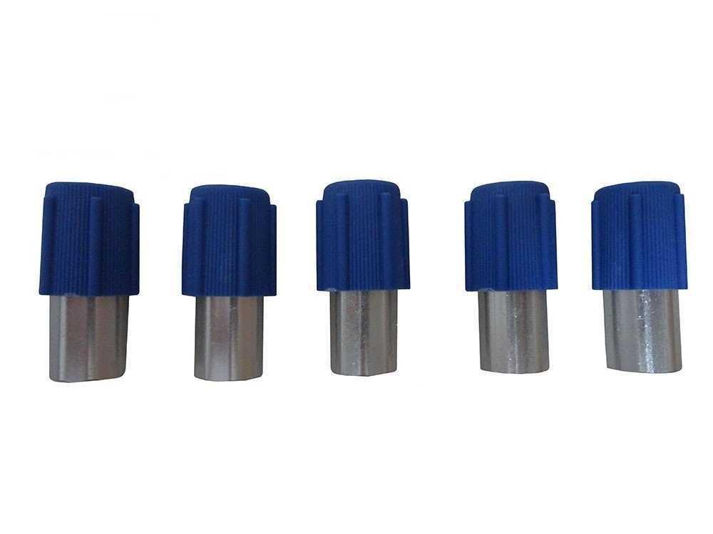 Valvula Enchimento Ar Condicionado Baixa Fox/G5/G6/Golf 5Pcs Baixa M10X1,25  *Pct 5Pcs* *Nucleo Removivel*