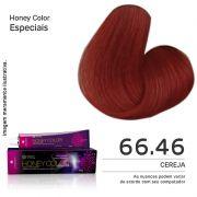 Coloração Honey Color 66.46 60g