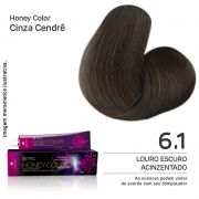 Coloração Honey Color 6.1 60g