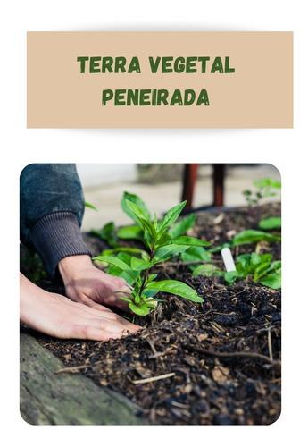 Saco de Terra Vegetal pra Jardim 2Kg