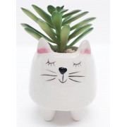 Mini Vaso Decorativo de Cerâmica de Gatinho com Flor artificial Suculenta | FWB