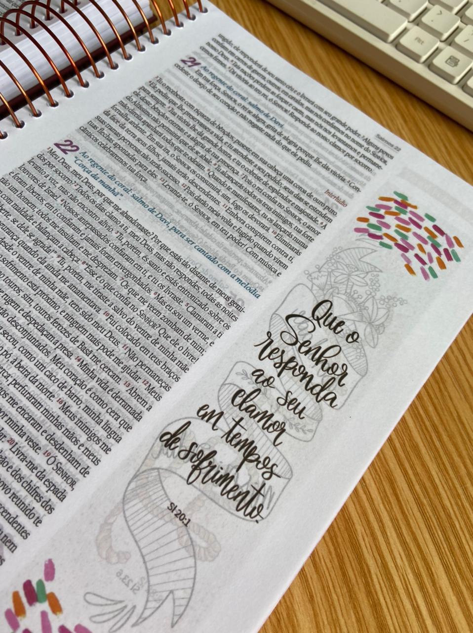 Bíblia Ilustrada Anote Cores e Flores NVT Letra Normal Capa Dura Espiral   Plenitude