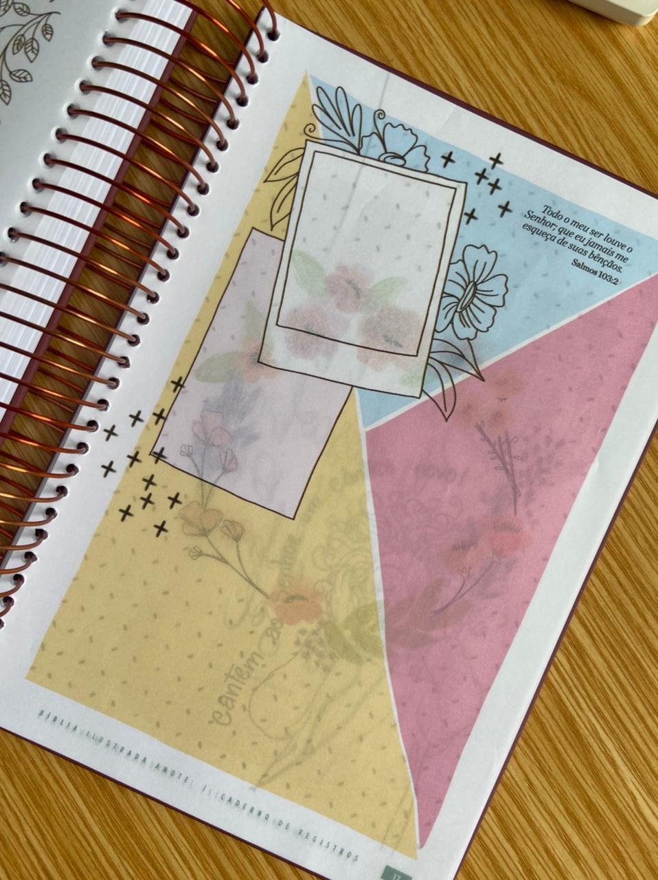 Biblia Ilustrada Anote Rosa Brilhante NVT Letra Normal Capa Dura Espiral | Plenitude
