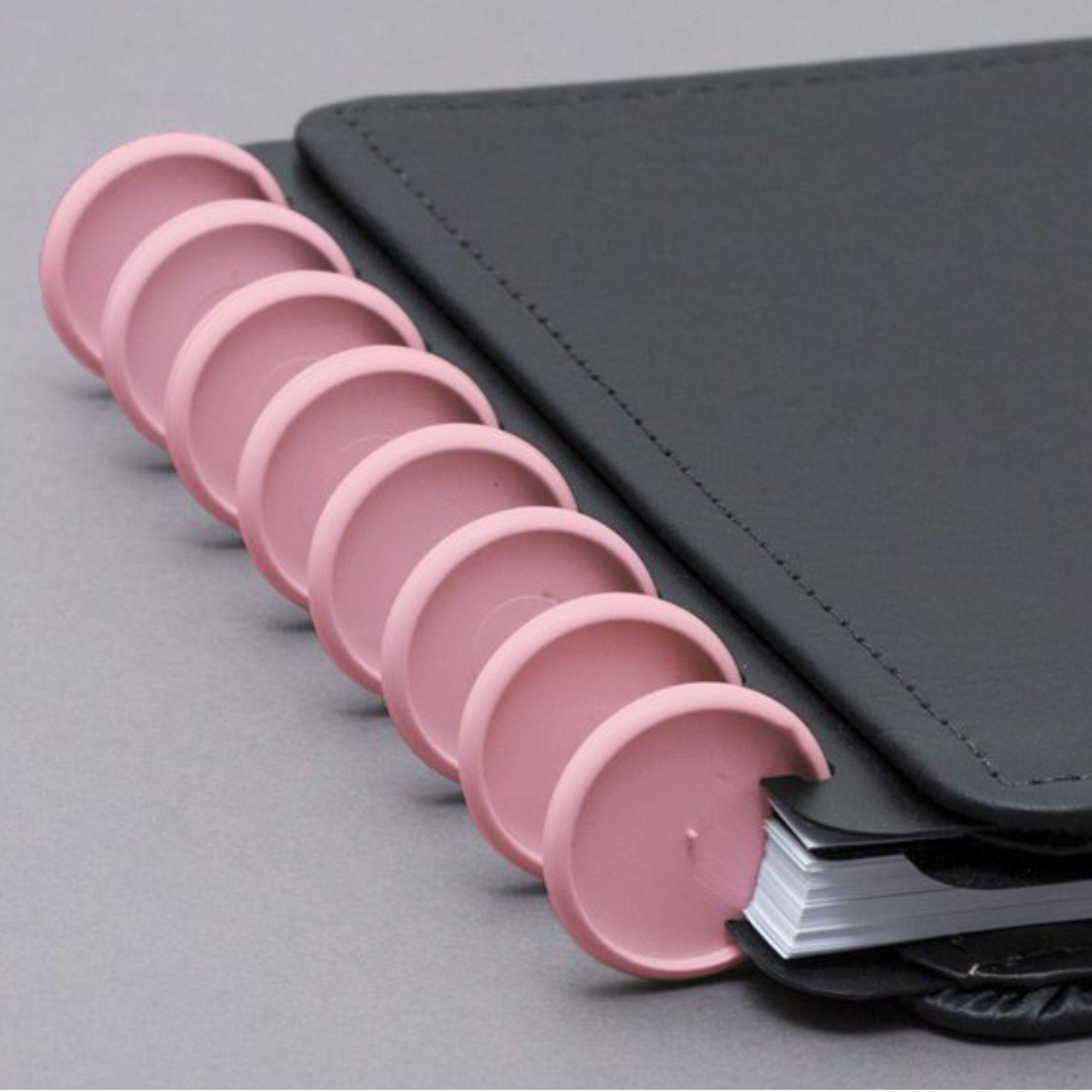 Discos e Elásticos Grandes 12 unidades e 1 Elástico | Caderno Inteligente