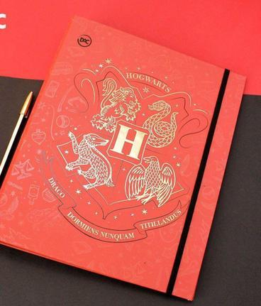 Fichário Harry Potter Universitário com 48 Folhas | DAC