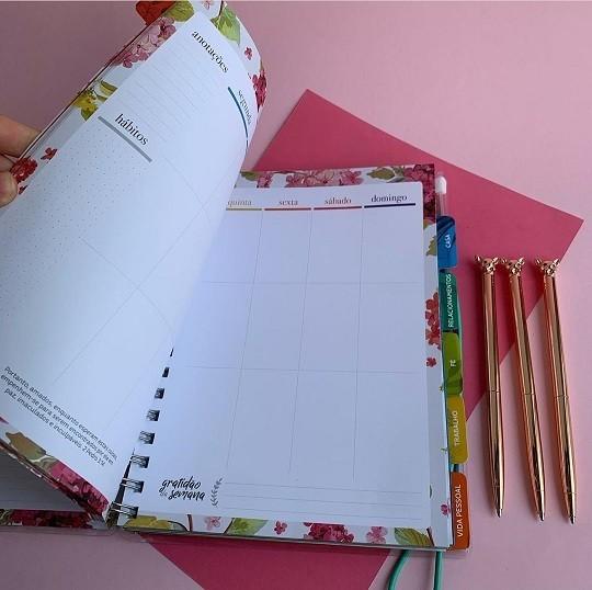 Planner Meu Plano Perfeito Ondas | Thomas Nelson