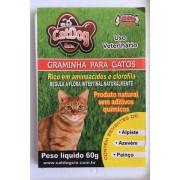 Graminha para Gatos - CatDog