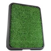 Graminha Pet Green