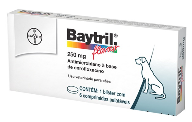 Baytril Flavour enrofloxacino 250mg - 6 comp