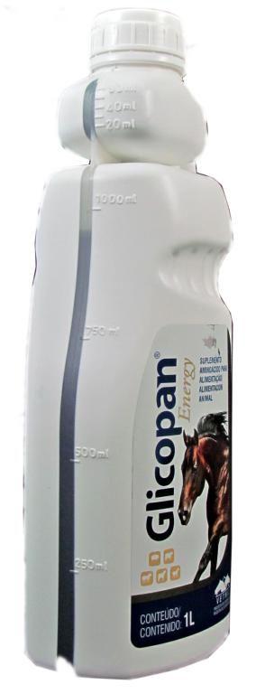 Glicopan Energy - 1 L