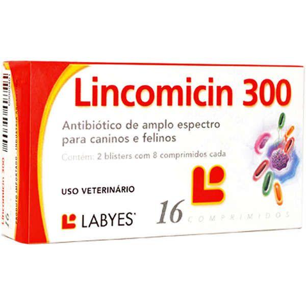 Lincomicin 300 - 16 comprimidos