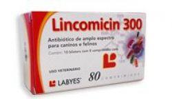 Lincomicin 300 - 80comprimidos