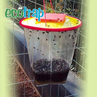 Refil Ecotrap Armadilha Ecológica